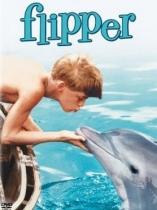Flipper le dauphin 840